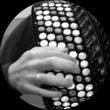 Thumb akkordeonhand bw